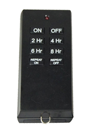 A photo of the single-speed remote control.